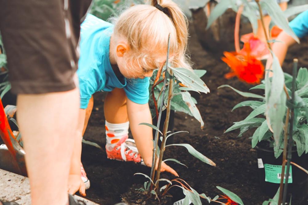 Фондация КОРЕН - Проект - Споделено компостиране - Програма Европа 2020